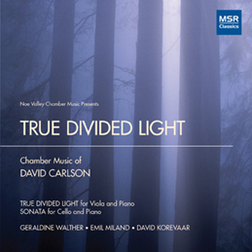TRUE DIVIDED LIGHT